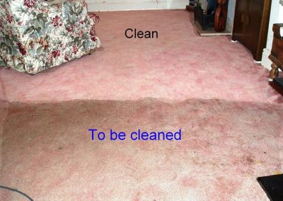 Pink Carpet cleaning